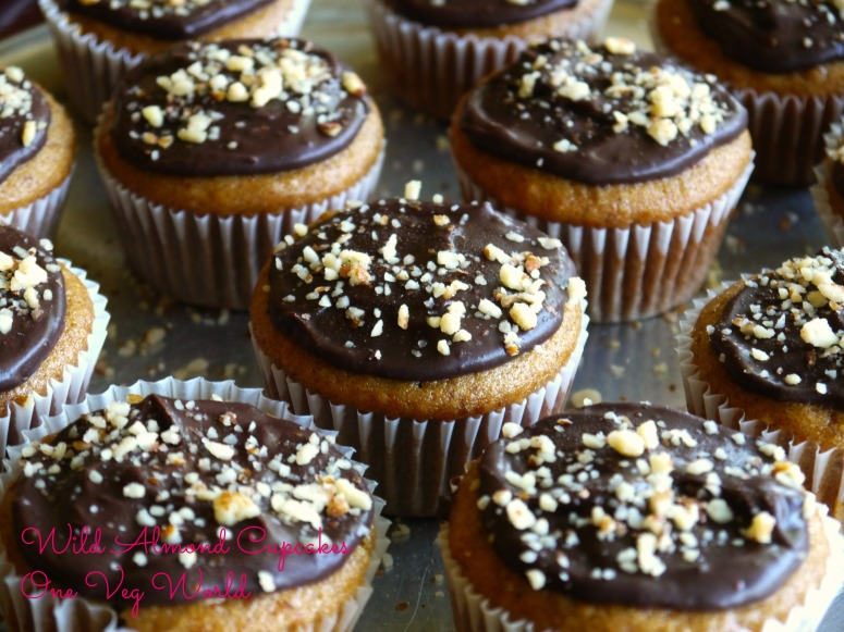 Wild Almond Cupcakes final
